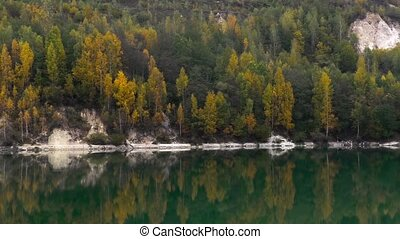 Forest reflecting on lake shore - Beautiful forest...