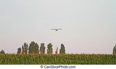 plane flying over corn field,plane flies over a field of...