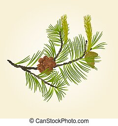 Blooming pine tree and pine cones vector.eps - Blooming pine...
