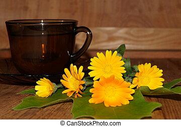 Medicinal plants-calendula,marigold - Medicinal plants -...