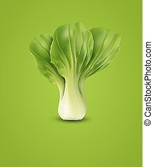 vector Pok Choy isolated, on green background