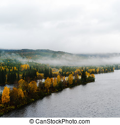 Square dramatic Norway fjord woods in fog landscape...