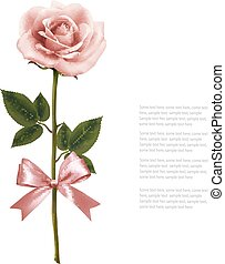 Single pink rose with bow isolated on white background. Vector.