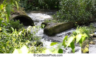 Waste water sewage pollutes river - Dirty wastewater sewer...