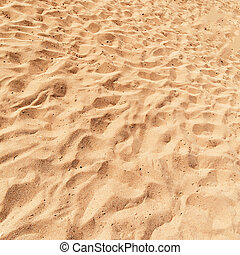 Beach Sand Background close up, square image Sandy Texture,...