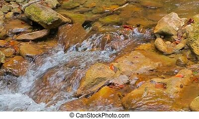 Beautiful Stream Flowing In Mountains - In the frame there...