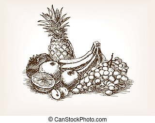 Fruits still life sketch style vector illustration