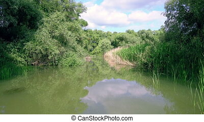 Water channel, river Danube Delta - Water channel, river in...