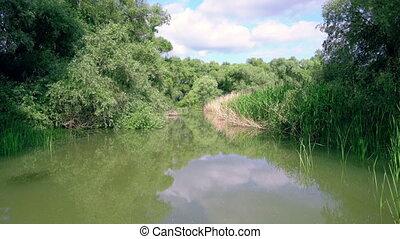 Water channel, river Danube Delta - Water channel, river in...