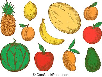 Colorful sketch of vegetarian fruits
