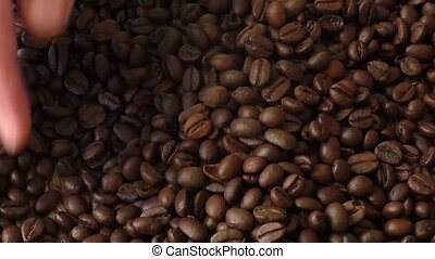 Coffee grains in woman hands