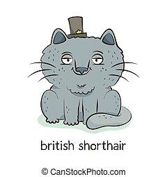 British shorthair. Cat character isolated on white - British...