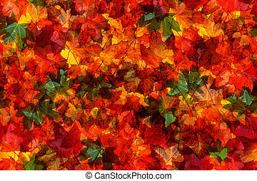 Seamless pattern of autumn leaves - Seamless pattern of fall...