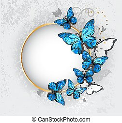 Round banner with blue butterflies morpho