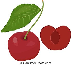 Ripe red cherry berries with leaves Vector - Ripe red cherry...