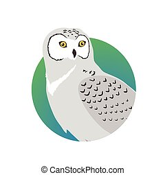 Snowy Owl Flat Design Vector Illustration - Snowy owl...