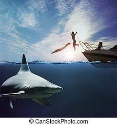 Shark attack - Reef shark (Carcharhinus perezii) lurking in...