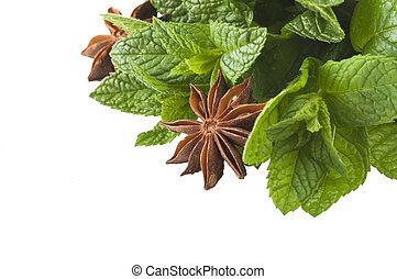 Spice mix - cinnamon,star anise,mint,licorice,close up on...