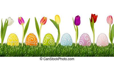 Tulpen, Eier, Ostern