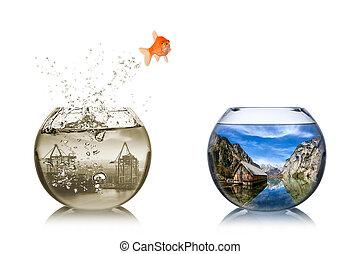 fish rethink concept - fisch springt vom dreckigen...