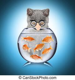 smart cat fish concept - cat with false nose looking into...
