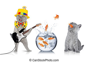 smart cat team concept - teamwork concept with cats and fish...
