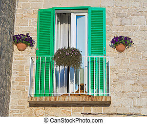 Balcony with green shutter.