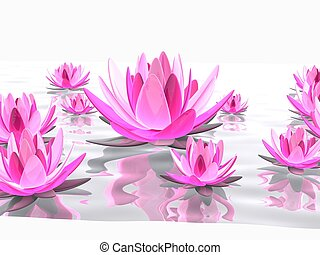 lotus flowers - 3d rendered illustration of elegant lotus...