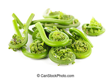 Fiddleheads - Pile of fresh spring wild fiddleheads on white...