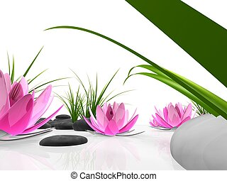 lotus garden - 3d rendered illustration of lotus flowers,...