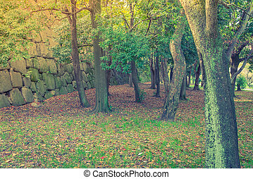 Green Forest trees Filtered image processed vintage effect -...