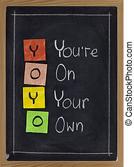 yoyo - you are on your own - YOYO acronym you are on your...