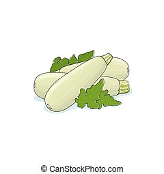 Zucchini Courgette Isolated on White Background, Three...
