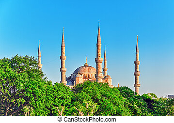 Beautiful Sultan Ahmed Mosque is a historic mosque in...
