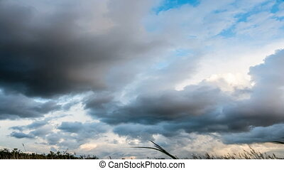 fluffy clouds over blue sky - Time lapse clip of white...