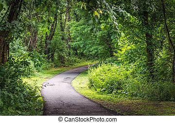 Raritan Greenway - Sunlight on this nature trail through the...