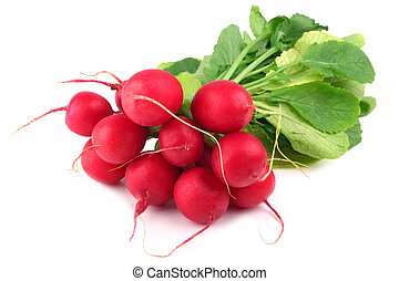 radishes - bunch of radishes on white background