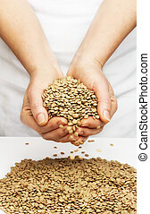 Lentils with hands.