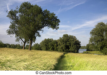floodplain near Vuren - Floodplain from the river Waal...