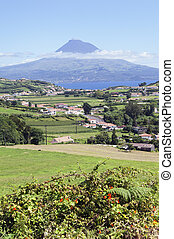 Landscape of Faial, Azores - Landscape of Faial with Pico...