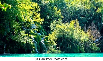 Lake view in Plitvice Lakes National Park of Croatia