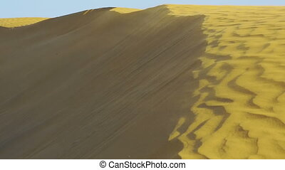 Dunes of Thar desert. - Sand dunes in the Thar desert,...