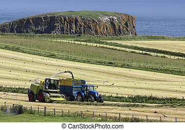 Agriculture - Ballycastle - Northern Ireland - Agriculture -...