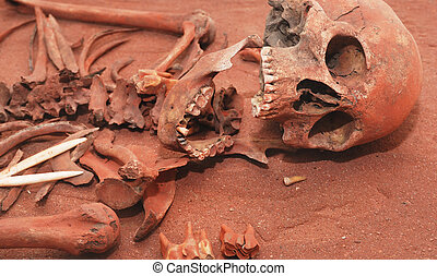 Skeleton remains of a buried unknown victim