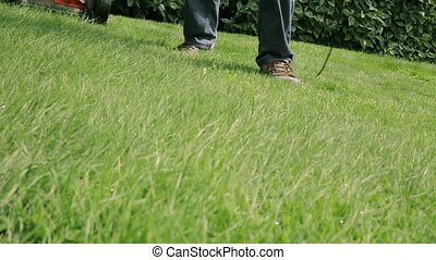 Lawn mower cutting the grass - Gardening Activity. Lawn...