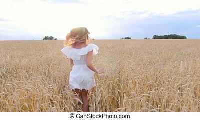 beautiful woman run away in wheat field - beautiful woman...