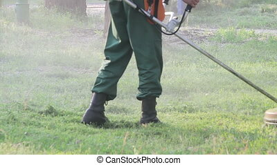 Gardener Mows the Lawn Mower Green Grass - Man Gardener mows...