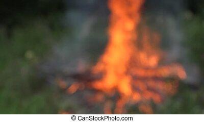 fire flames burn between high meadow grass. Blur in. 4K -...