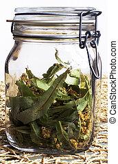 Linden blossom in jar