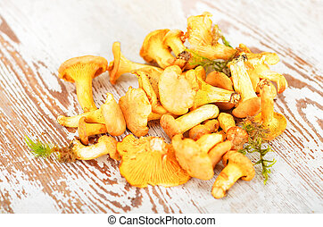 Chanterelle mushroom on board - Chanterelle mushroom on...